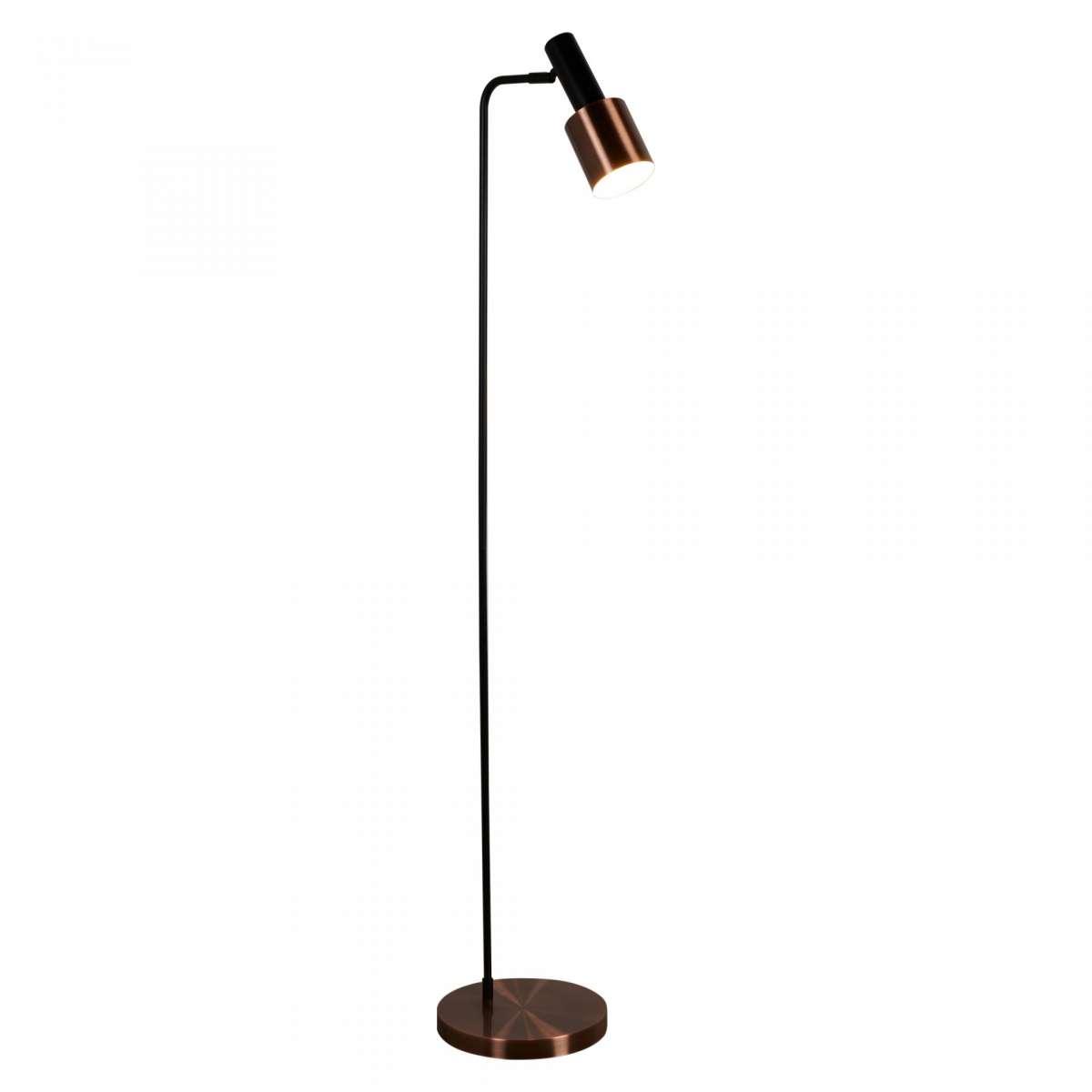 1 Light Floor Lamp, Black, Antique Copper