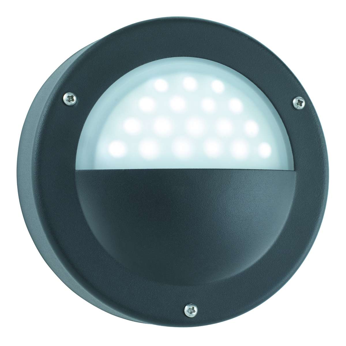 Black Ip44 18 Led Circular Outdoor Wall Light With Acid Glass